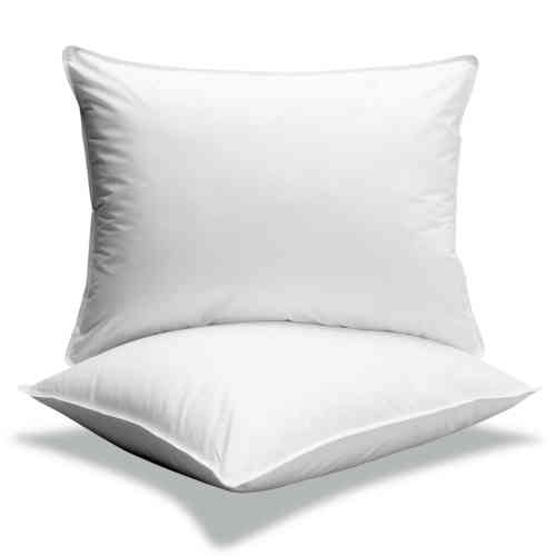 Oreiller d'eau Water Pillow