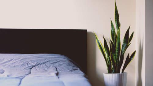 Chambre a couché propre