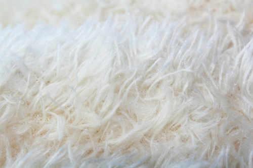 Couette en laine pure et bio
